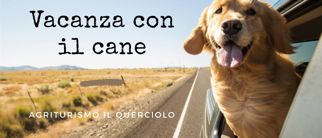 Vacanze con il cane in Maremma Toscana – Grosseto